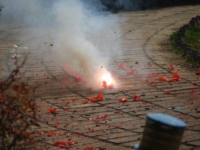 Partij voor de Dieren wil vuurwerkverbod