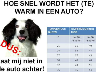 Hoe snel (te) warm in auto?