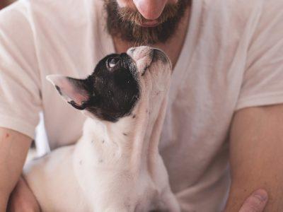 Baas en hond sterven kwartier na elkaar