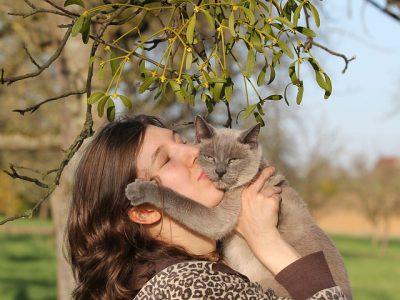 Twee op de drie baasjes liever met kat dan vrienden