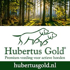 Banner-Hubertus-Gold-240-x-240-