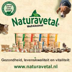 Banner-NaturaVetal